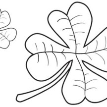 A Pair of Four-Leaf Clover Coloring Page