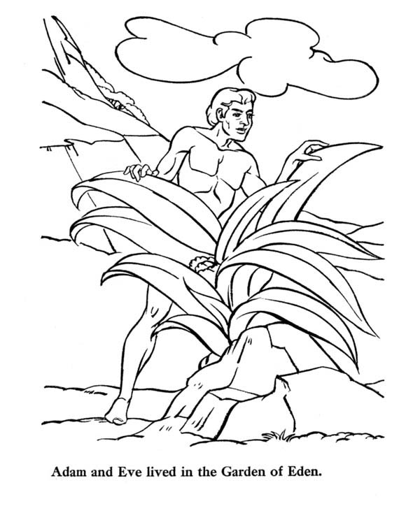 Adam lived in garden of eden coloring page netart for Garden of eden coloring page