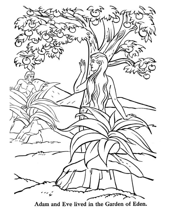 adam  eve lived   garden  eden coloring page