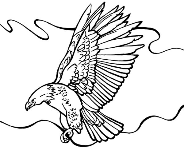 Eagle Free Colouring Pages