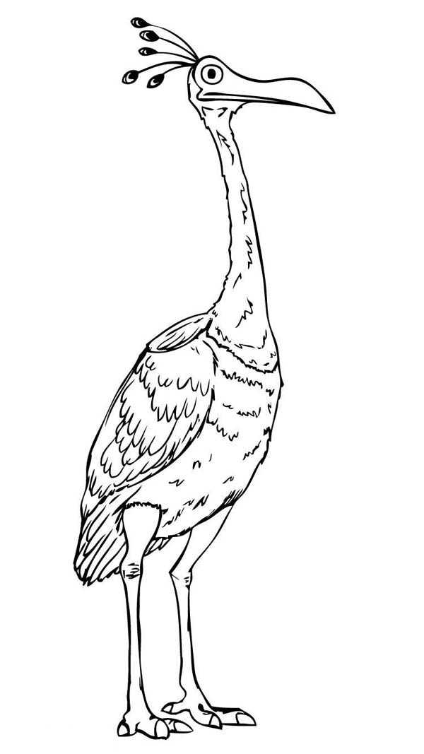 Beautiful Disney Up Character Kevin the Bird Coloring Page - NetArt