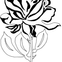 Beautiful Rose Flower for You Coloring Page
