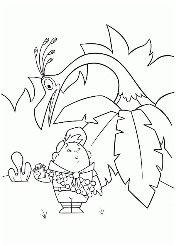 up kevin coloring pages - photo#10