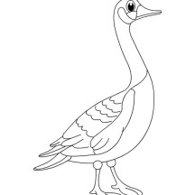 Big Eyed Goose Coloring Page