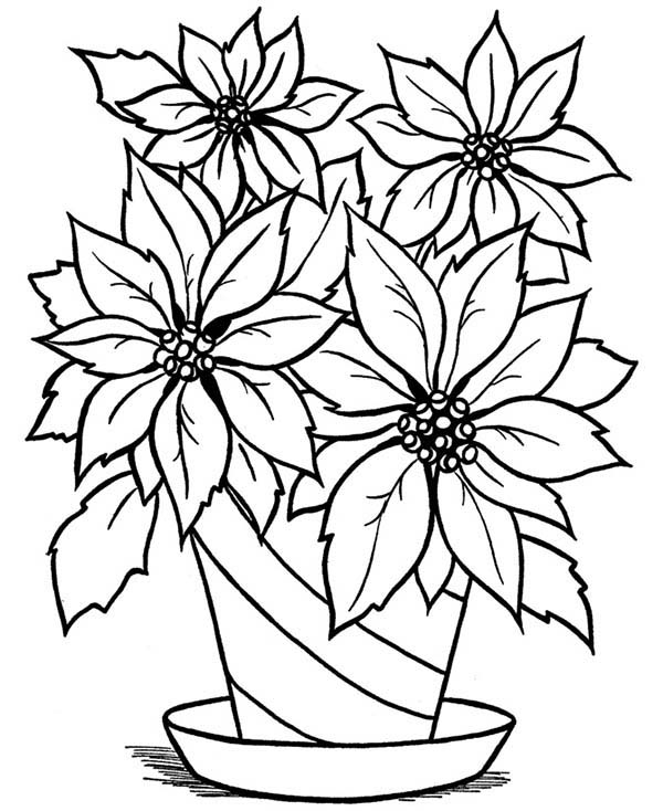 Blooming Flower in the Vase Coloring Page  NetArt