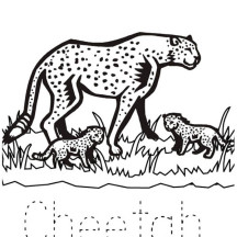 Cheetah and Her Babies Coloring Page
