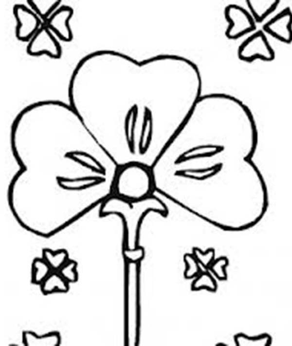Counting the Four-Leaf Clover Pod Coloring Page