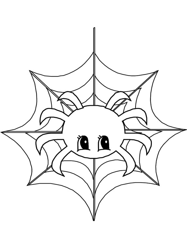 Cute Little Spider On Web Coloring Page