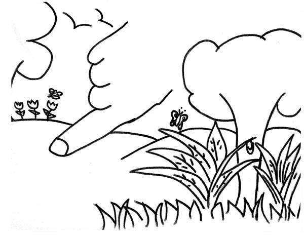 coloring pages garden of eden - photo#19