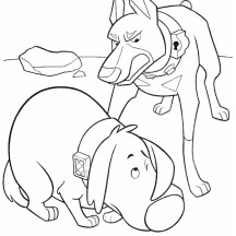 Dug is Afraid to Alpha in Disney Up Coloring Page