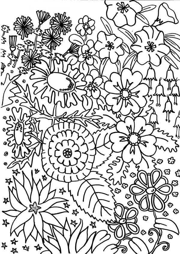 Flower in My Garden Coloring Page NetArt