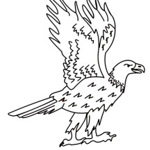 Funny Bald Eagle Coloring Page