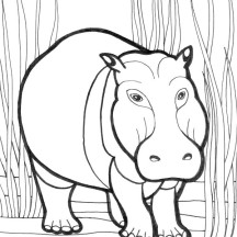 Furious Hippo Coloring Page