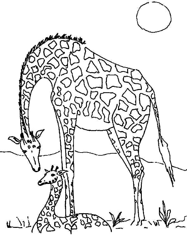 cartoon giraffe coloring cake ideas and designs