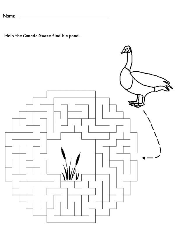 Goose Maze Game Coloring Page