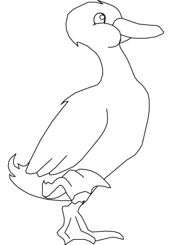 Goose Stand with One Foot Coloring Page NetArt