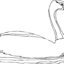 Goose Swim in the Pond Coloring Page