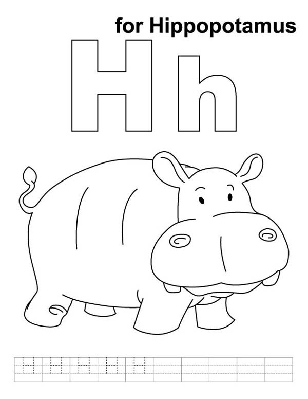 H for Hippopotamus in Hippo Coloring Page NetArt