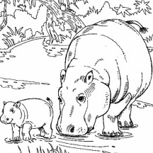 Hippo netart for Baby hippo coloring pages
