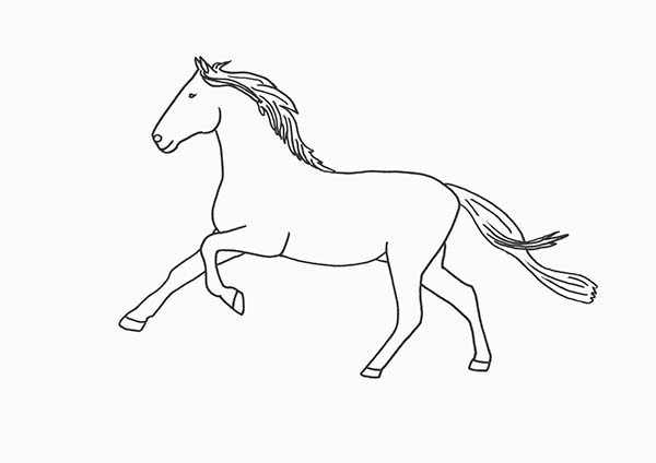 Horse Running Outline In Horses Coloring Page