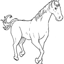 Horse Walking in Horses Coloring Page