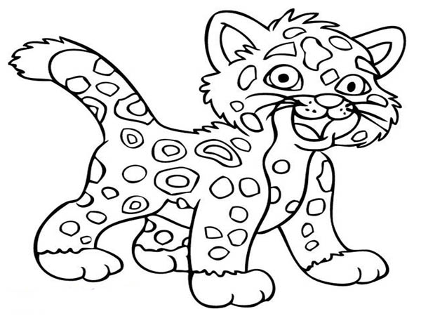 baby cheetah coloring pages - photo#14