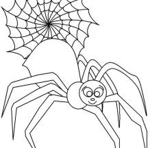 Male Spider in Front of Spider Web Coloring Page