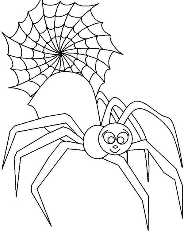 Male Spider in Front of Spider Web Coloring Page  NetArt