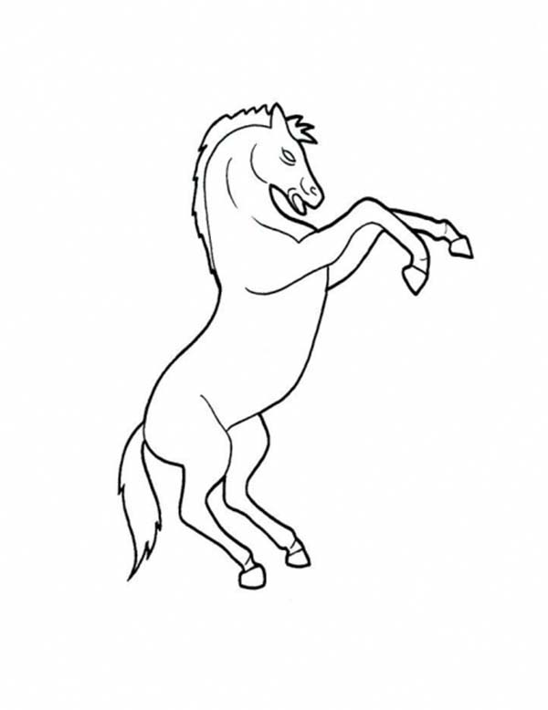 Picture of Horse Rearing in Horses Coloring Page - NetArt