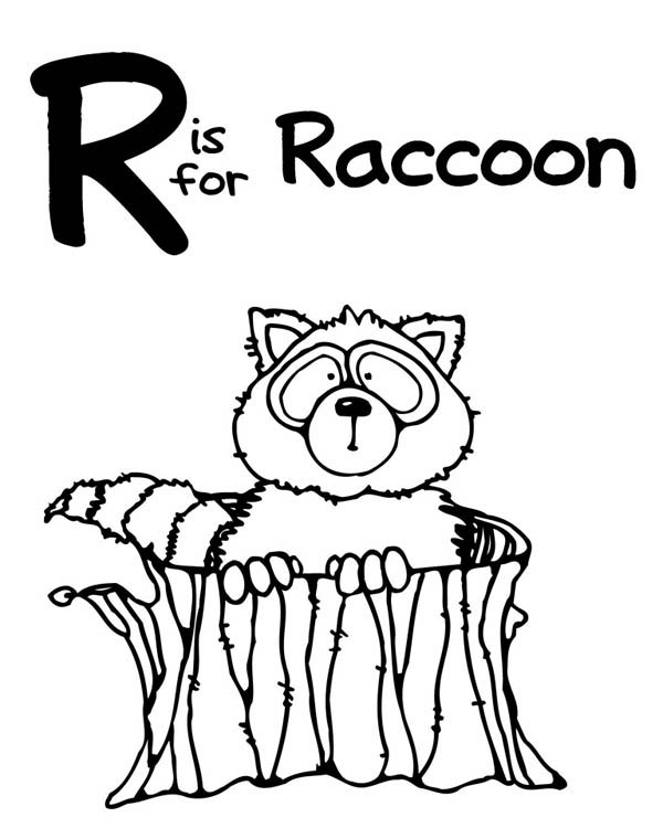 R is for Raccoon Coloring Page NetArt