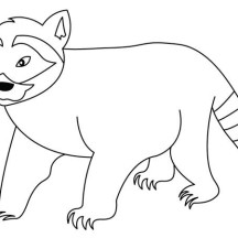 Raccoon Walking Coloring Page