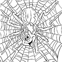 Silly Spider on Spider Web Coloring Page