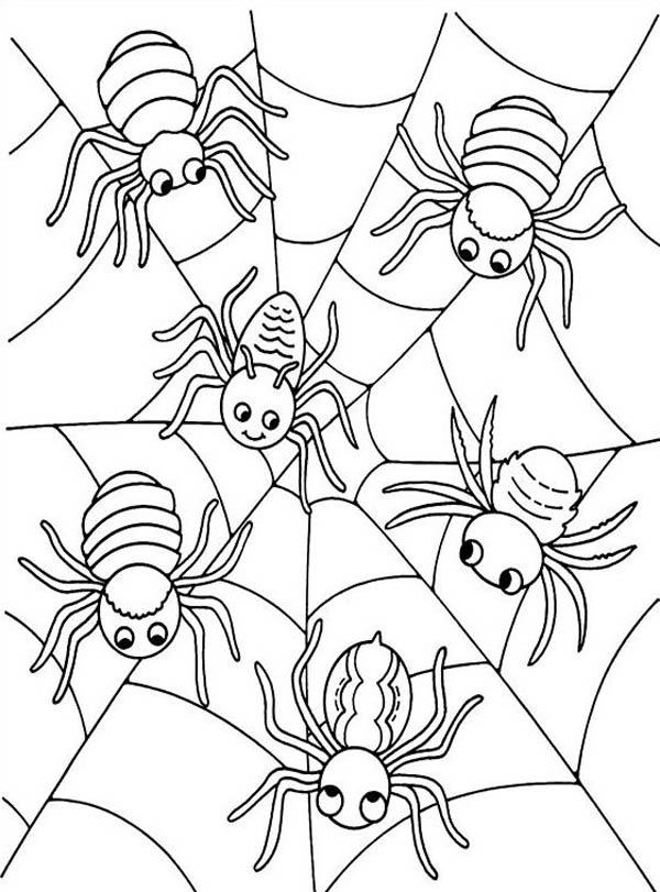 Spider Web Drawings Coloring Coloring Pages
