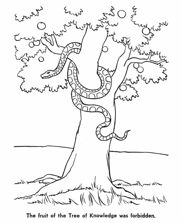Snake And Tree Of Knowledge In Garden Eden Coloring Page