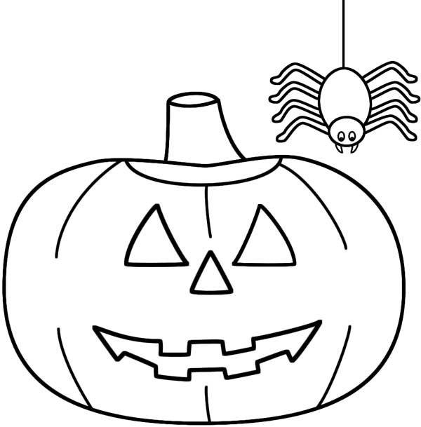 Spider Hanging on His Spider Web Coloring Page  NetArt
