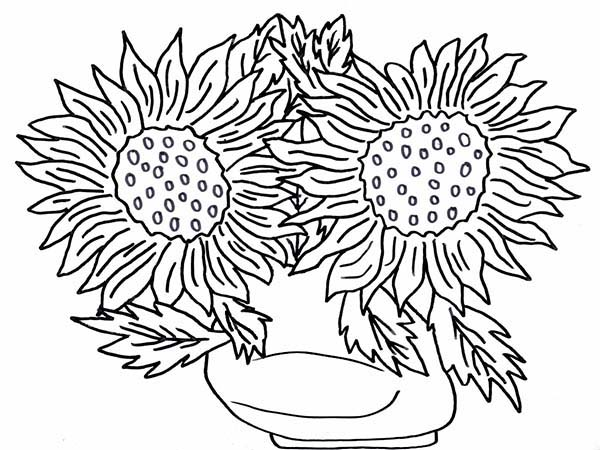 flower vase coloring page. Sun Flower in the Vase Coloring Page  NetArt