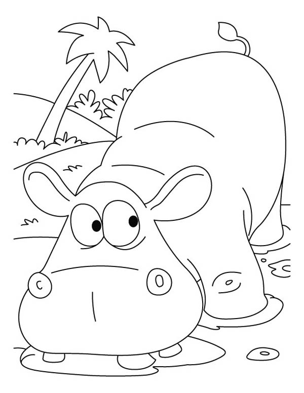 Hippo Coloring Page Miakenasnet