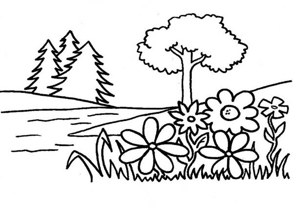 Tree Of Life In Garden Eden Coloring Page