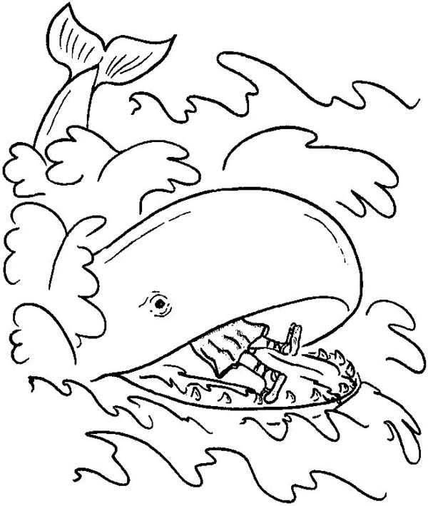 A Great Whale Swallowed Jonah Body In And The Coloring Page