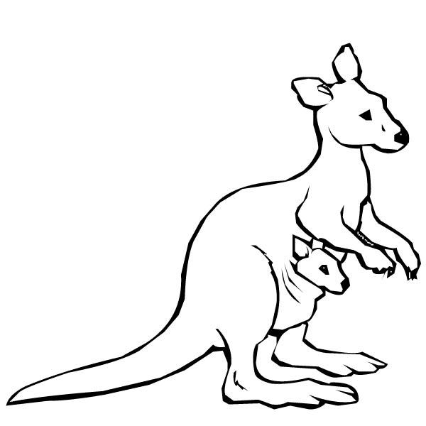 Australian Kangaroo and Baby Kangaroo Coloring Page NetArt
