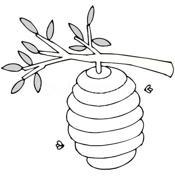 Beehive Up at Tree Branch Coloring Page NetArt