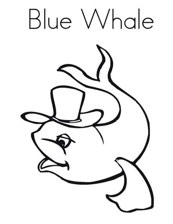 Blue Whale Wearing Hat Coloring Page