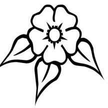 Daffodil Image Coloring Page
