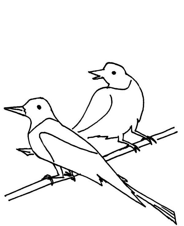 Draw Seagull Coloring Page