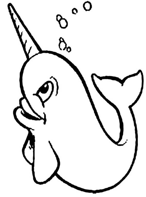 Happy Narwhal Coloring Page NetArt
