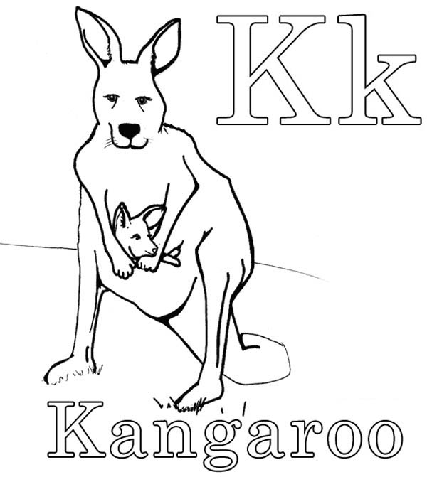 k for kangaroo coloring pages - photo#4