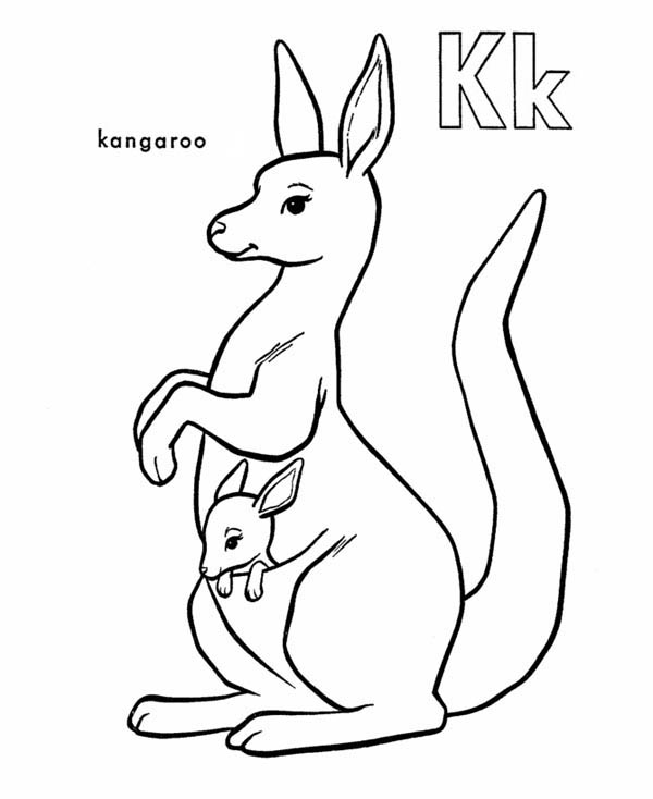 kangaroo animal coloring pages. Kangaroo Carrying Baby Coloring Page  NetArt