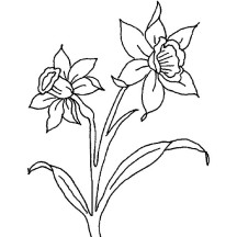 march flower coloring pages - photo#8