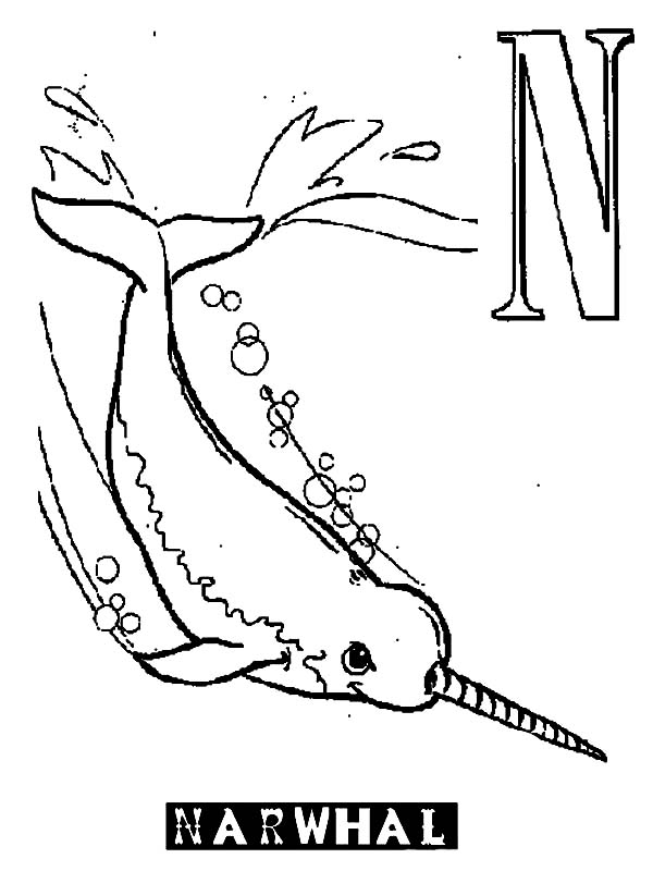 Narwhals Coloring Printable Coloring Pages