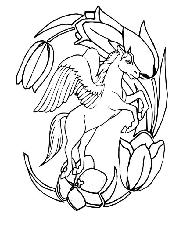 Pegasus and Flower Frame Coloring Page